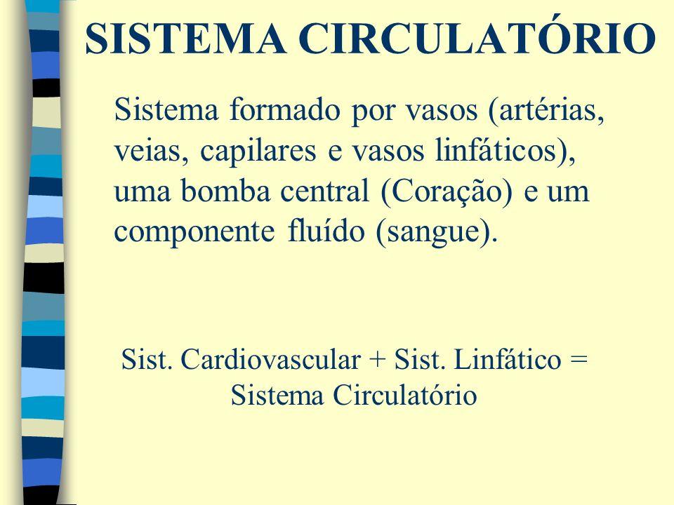 Sist. Cardiovascular + Sist. Linfático =