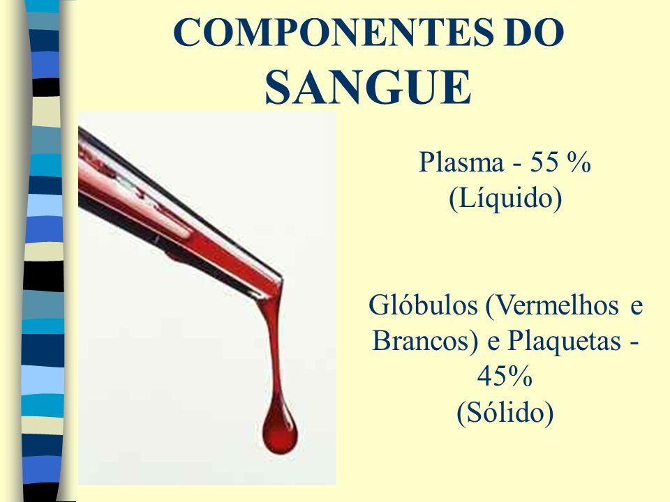 Glóbulos (Vermelhos e Brancos) e Plaquetas - 45%