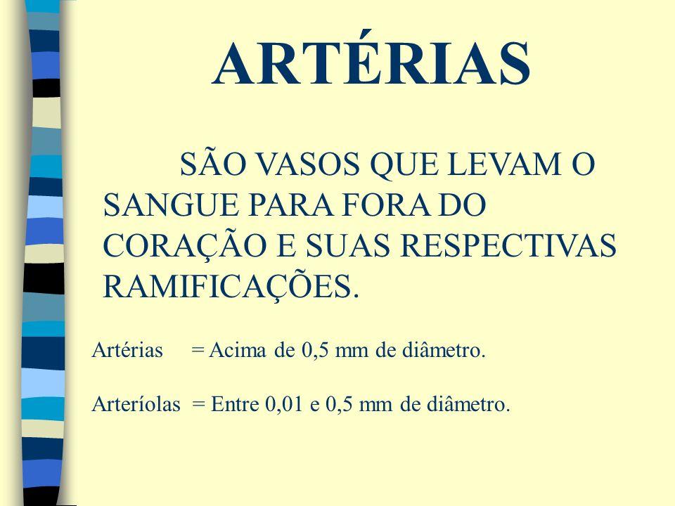 ARTÉRIAS SÃO VASOS QUE LEVAM O SANGUE PARA FORA DO CORAÇÃO E SUAS RESPECTIVAS RAMIFICAÇÕES. Artérias = Acima de 0,5 mm de diâmetro.