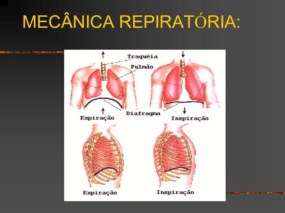 MECÂNICA REPIRATÓRIA:
