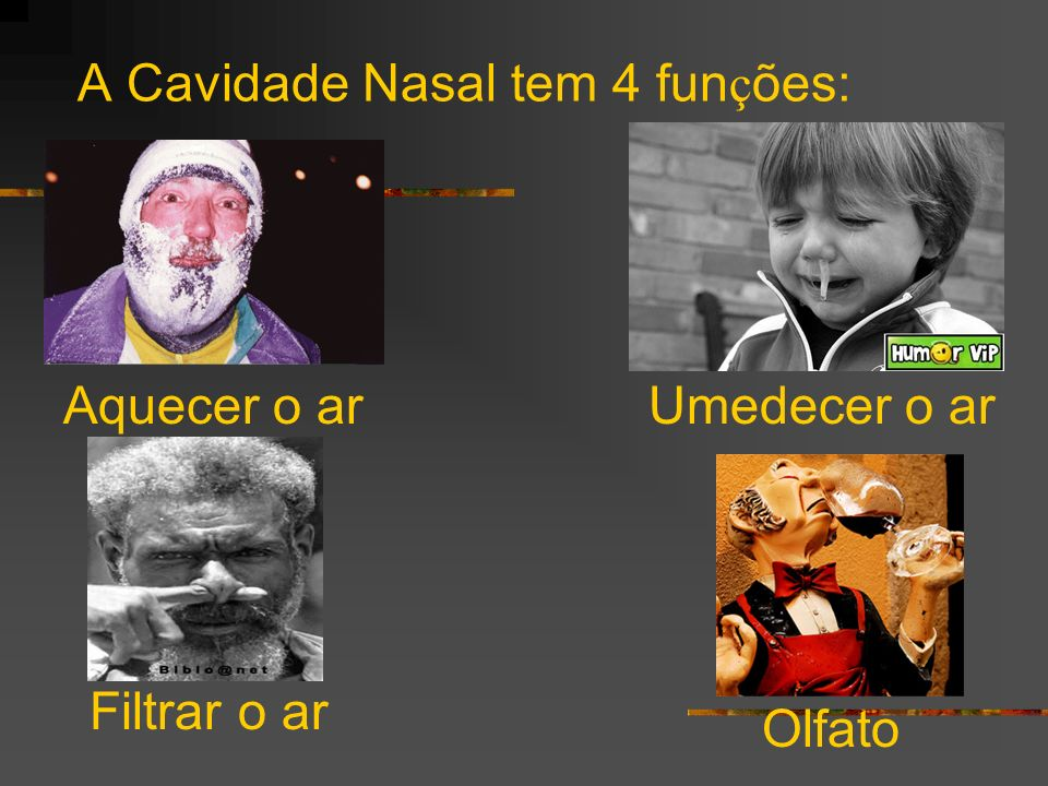 A Cavidade Nasal tem 4 funções: