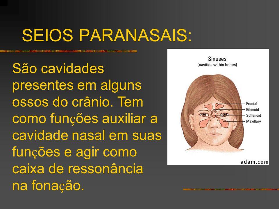 SEIOS PARANASAIS:
