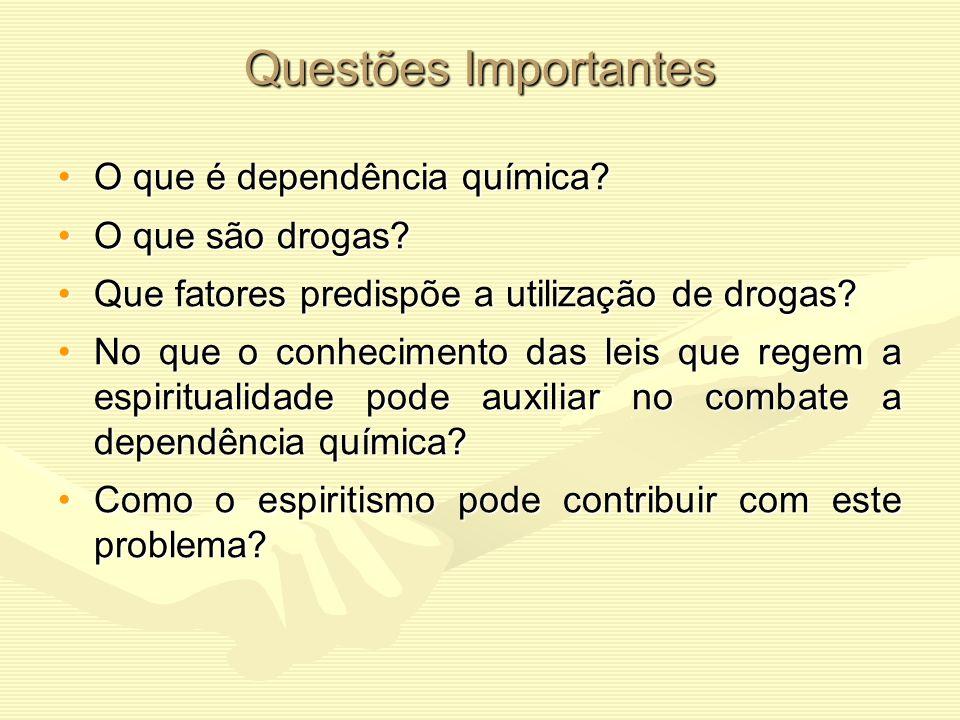 Questões Importantes O que é dependência química O que são drogas