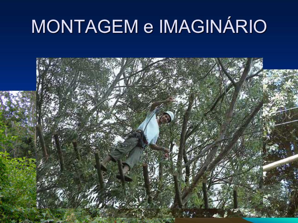 MONTAGEM e IMAGINÁRIO