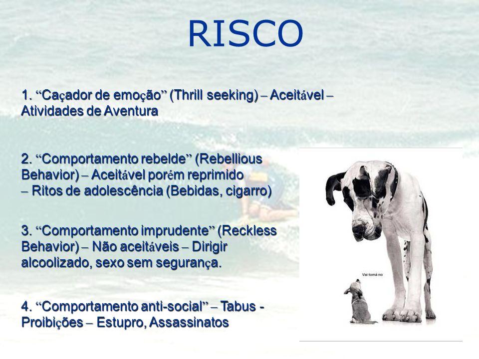 RISCO1. Caçador de emoção (Thrill seeking) – Aceitável – Atividades de Aventura.
