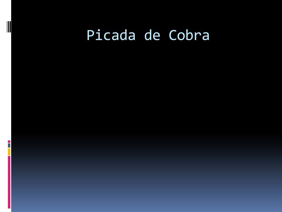 Picada de Cobra 114