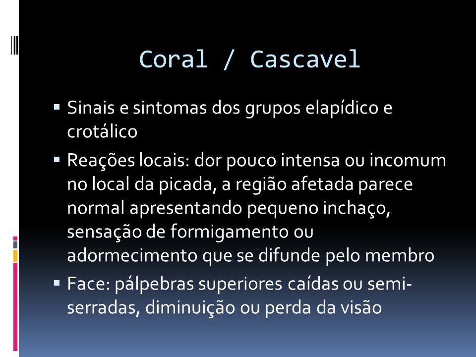 Coral / Cascavel Sinais e sintomas dos grupos elapídico e crotálico