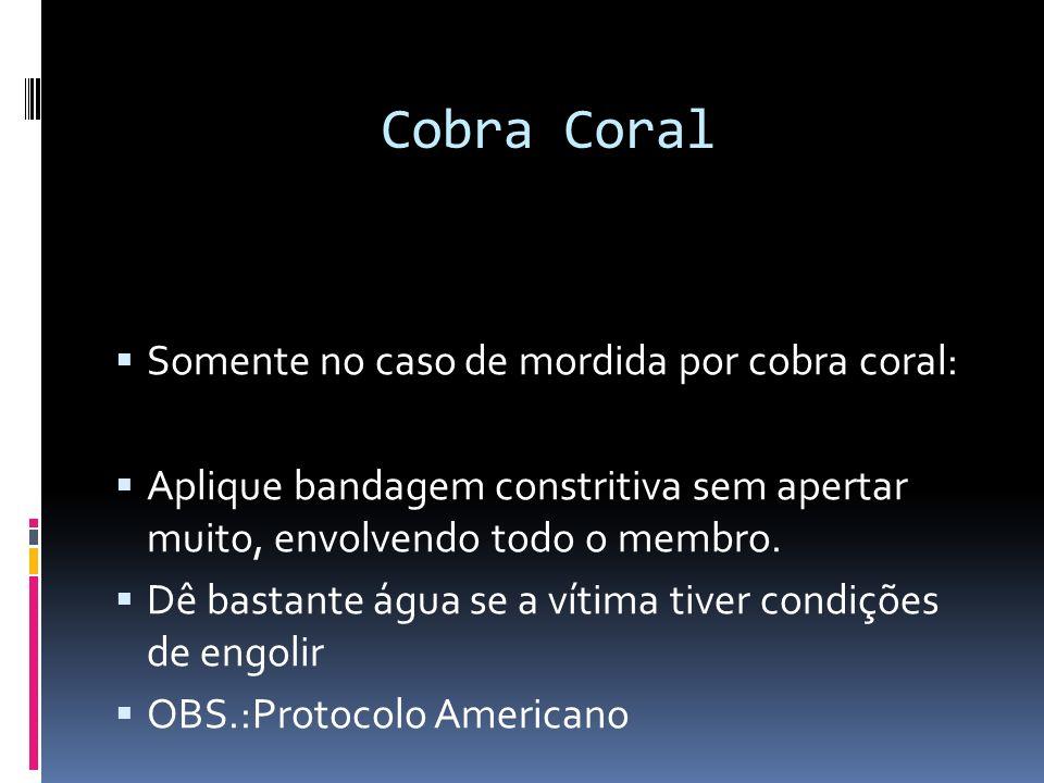 Cobra Coral Somente no caso de mordida por cobra coral: