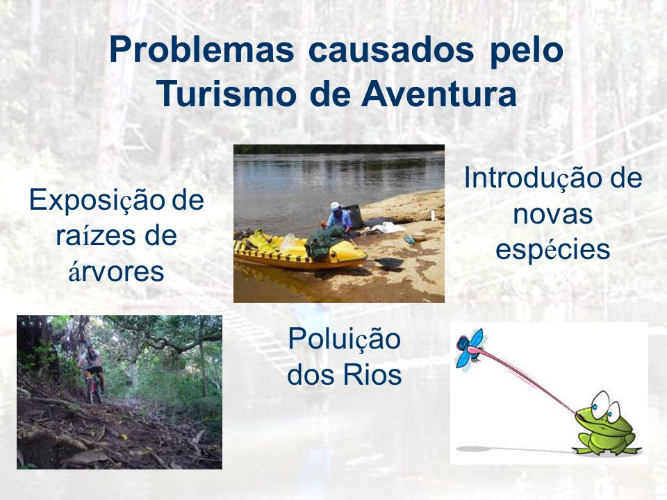 Problemas causados pelo Turismo de Aventura