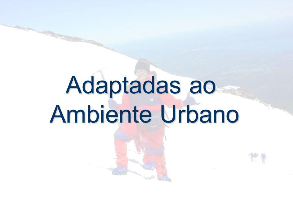 Adaptadas ao Ambiente Urbano