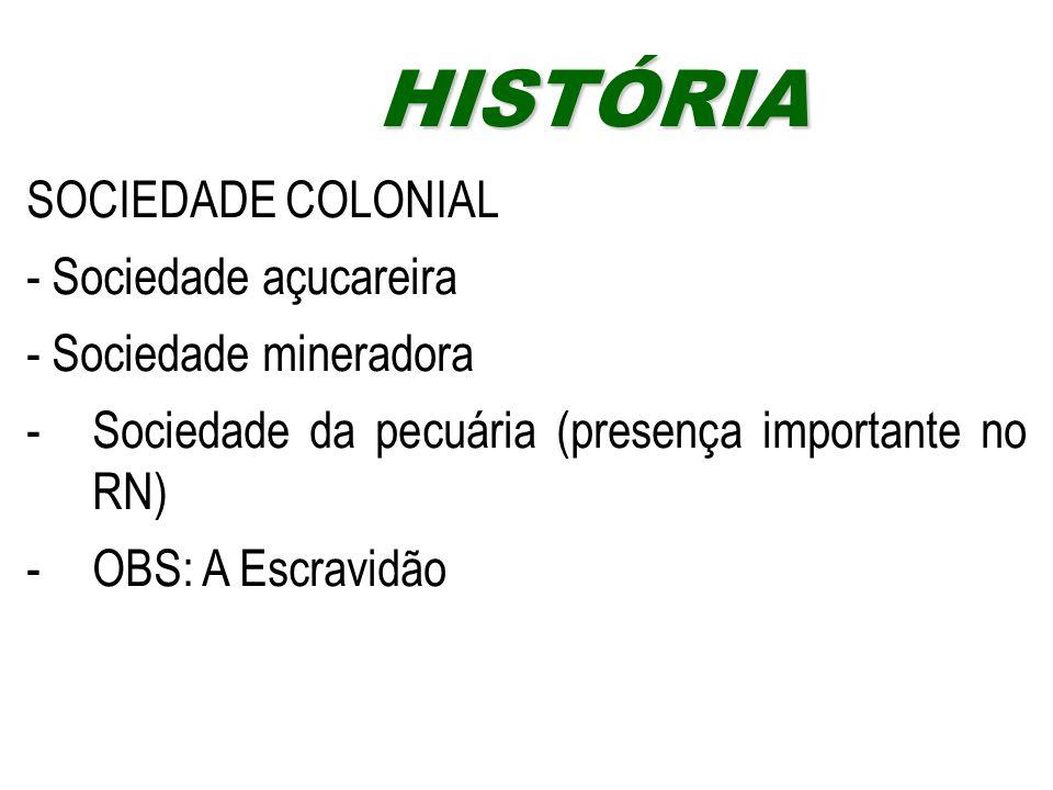 HISTÓRIA SOCIEDADE COLONIAL - Sociedade açucareira