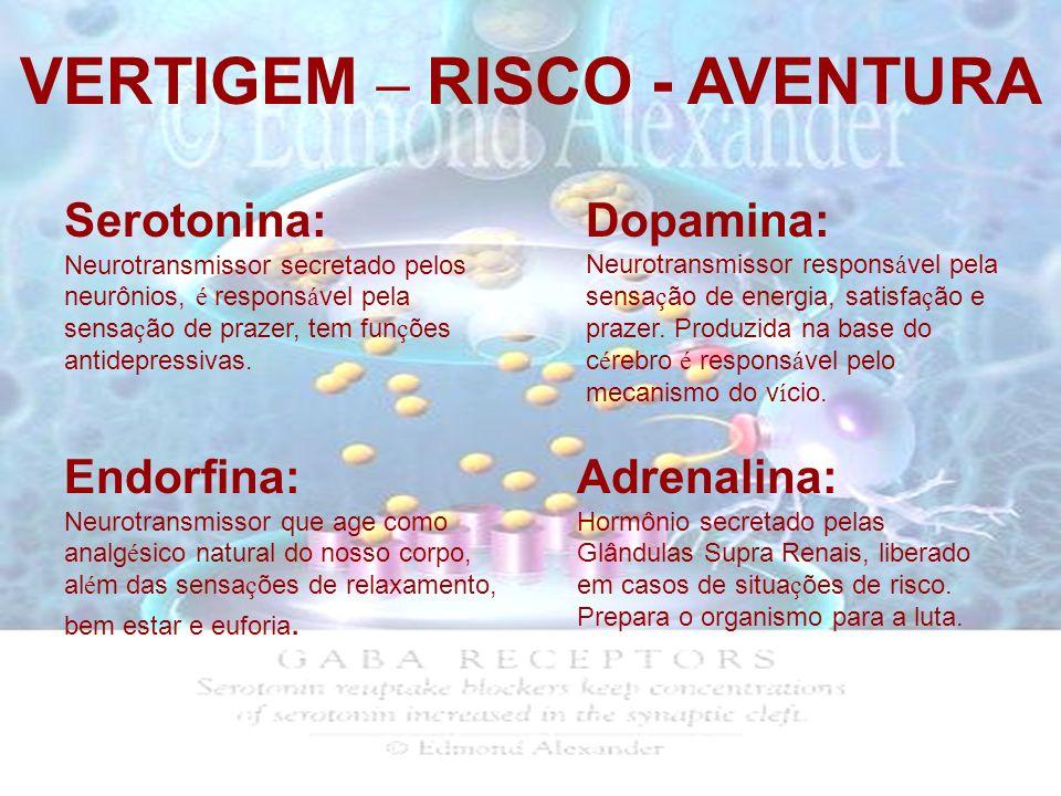 VERTIGEM – RISCO - AVENTURA