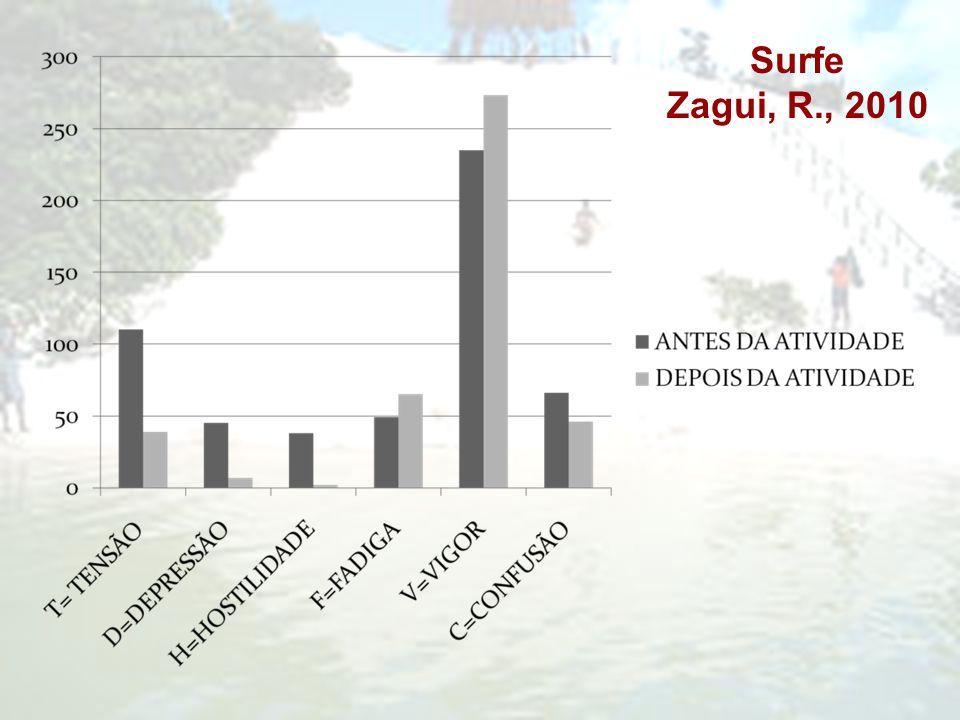 Surfe Zagui, R., 2010