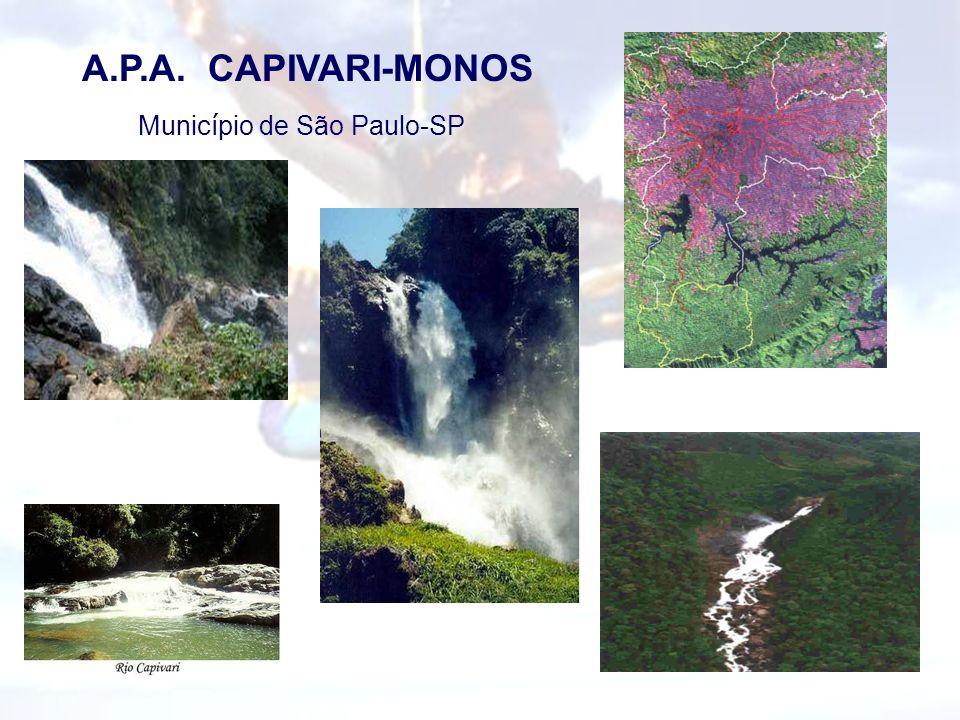Município de São Paulo-SP