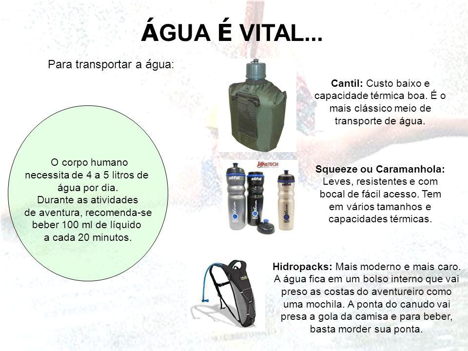 ÁGUA É VITAL... Para transportar a água: