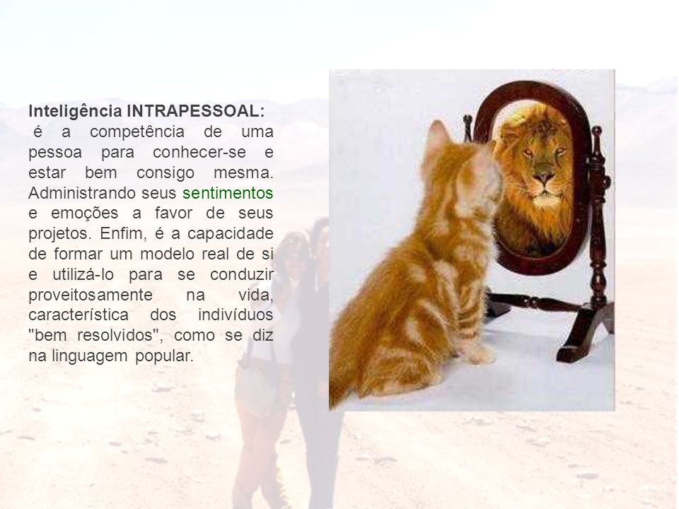 Inteligência INTRAPESSOAL: