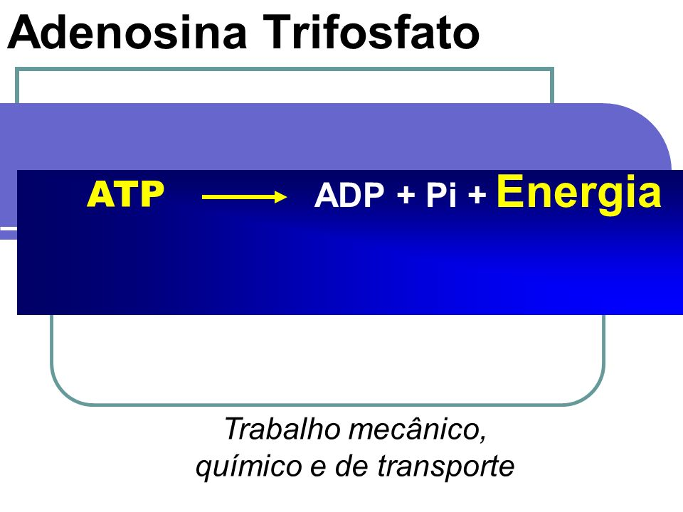 químico e de transporte