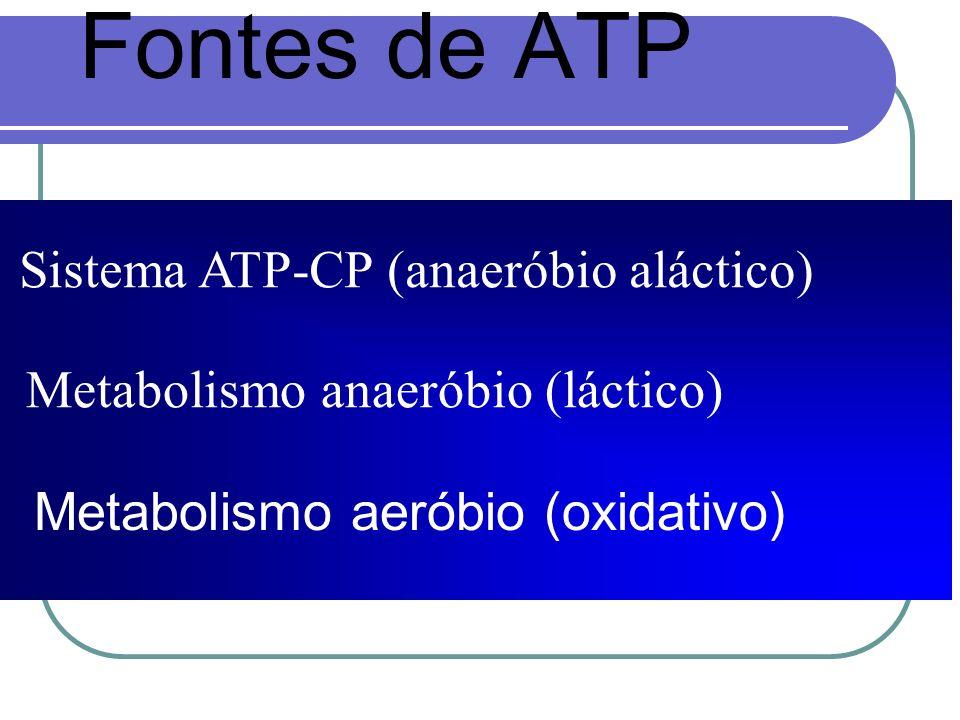 Fontes de ATP Sistema ATP-CP (anaeróbio aláctico)