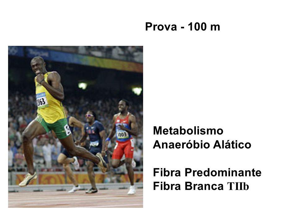 Prova - 100 m Metabolismo Anaeróbio Alático Fibra Predominante Fibra Branca TIIb
