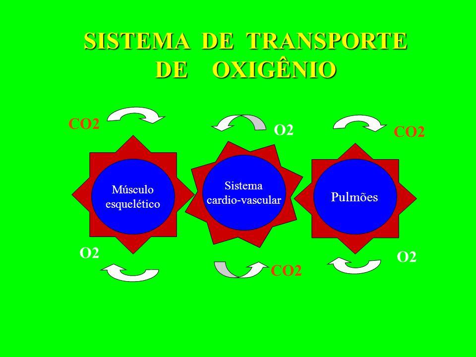 SISTEMA DE TRANSPORTE DE OXIGÊNIO CO2 O2 CO2 O2 O2 CO2 Pulmões Sistema