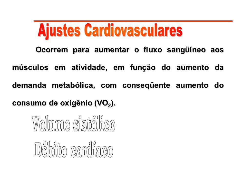Ajustes Cardiovasculares