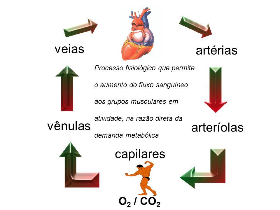 veias artérias vênulas arteríolas capilares O2 / CO2