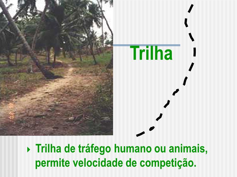 Trilha de tráfego humano ou animais, permite velocidade de competição.
