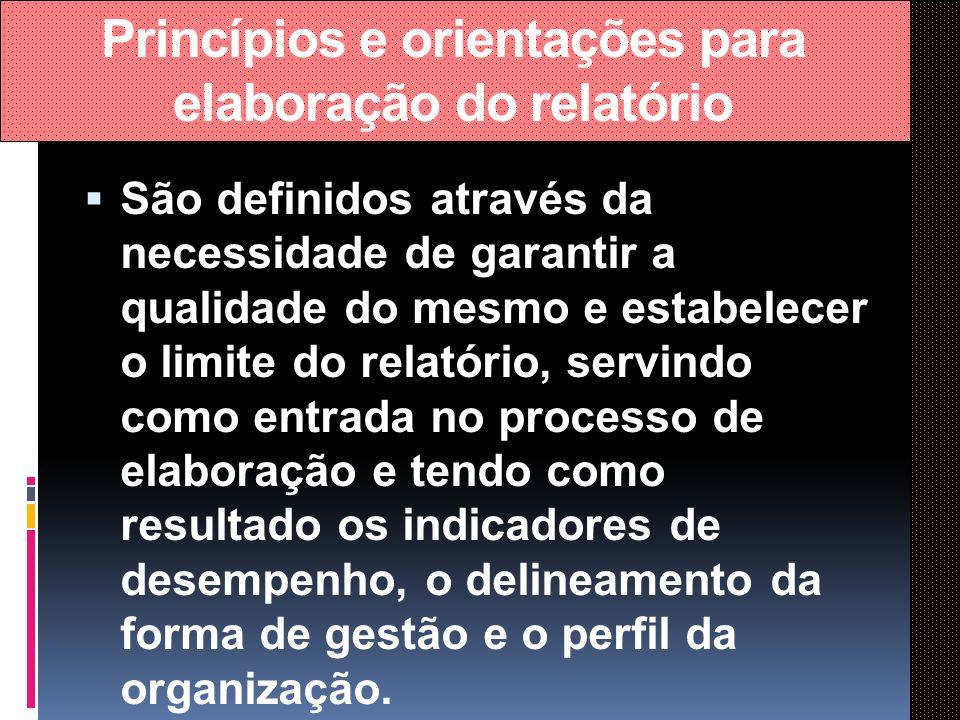 Princípios e orientações para elaboração do relatório