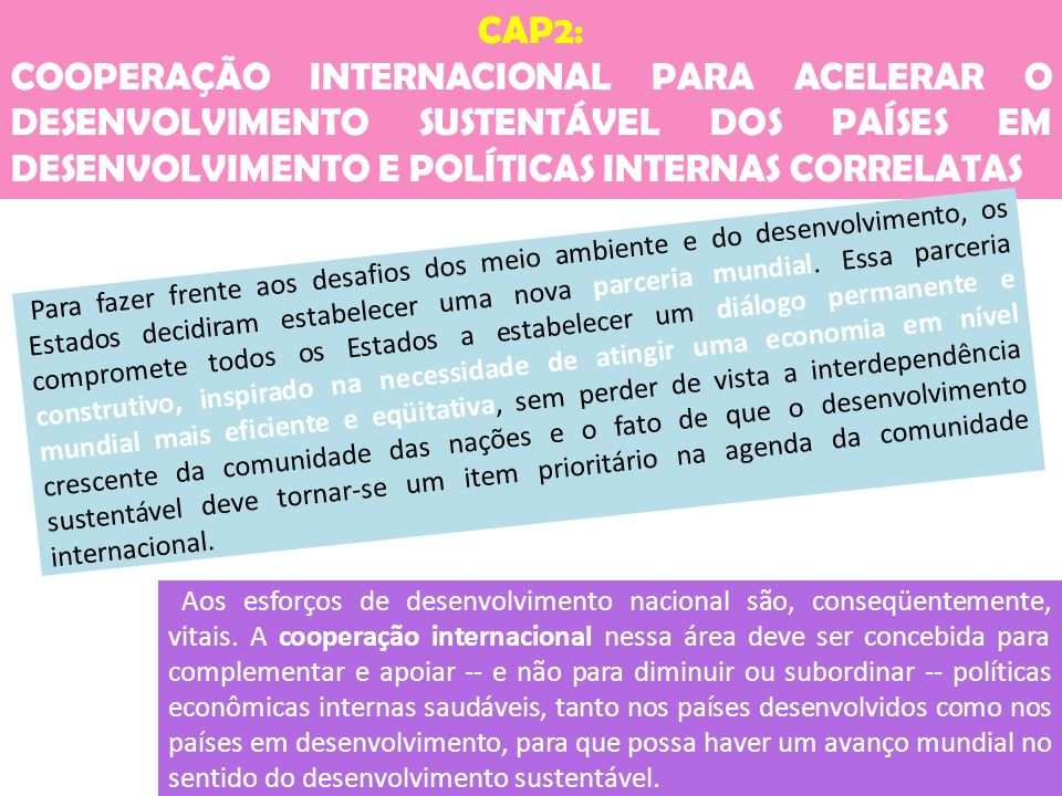 CAP2: COOPERAÇÃO INTERNACIONAL PARA ACELERAR O DESENVOLVIMENTO SUSTENTÁVEL DOS PAÍSES EM DESENVOLVIMENTO E POLÍTICAS INTERNAS CORRELATAS.