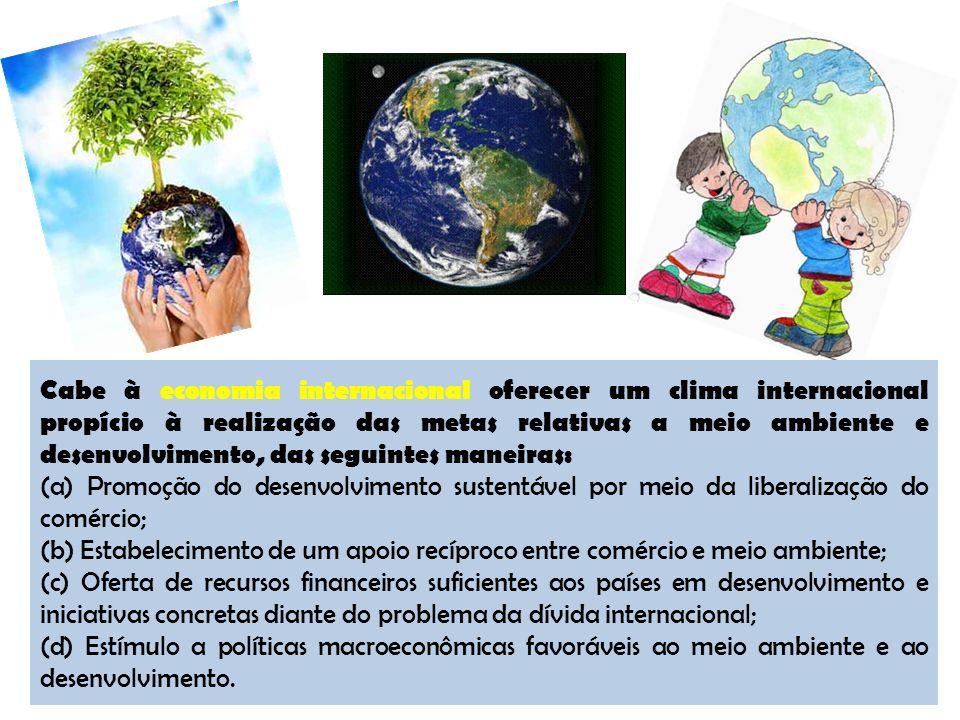 Cabe à economia internacional oferecer um clima internacional propício à realização das metas relativas a meio ambiente e desenvolvimento, das seguintes maneiras: