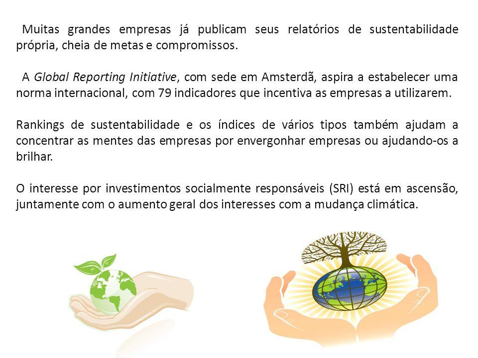 Muitas grandes empresas já publicam seus relatórios de sustentabilidade própria, cheia de metas e compromissos.