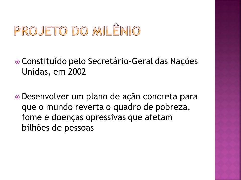 Projeto do Milênio Constituído pelo Secretário-Geral das Nações Unidas, em 2002.