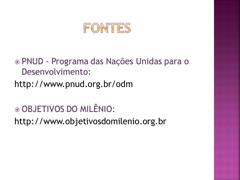 FONTES PNUD - Programa das Nações Unidas para o Desenvolvimento: