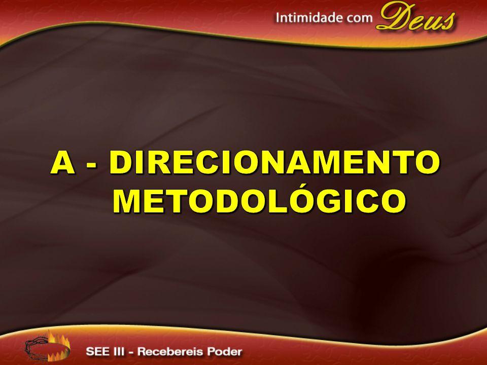 A - Direcionamento metodológico