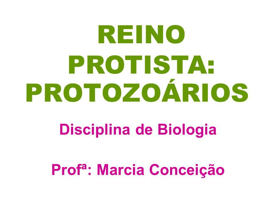 Disciplina de Biologia Profª: Marcia Conceição