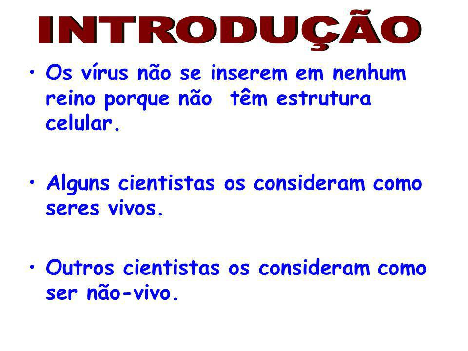 INTRODUÇÃO Os vírus não se inserem em nenhum reino porque não têm estrutura celular. Alguns cientistas os consideram como seres vivos.