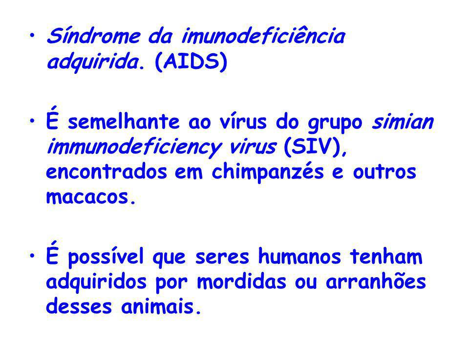 Síndrome da imunodeficiência adquirida. (AIDS)