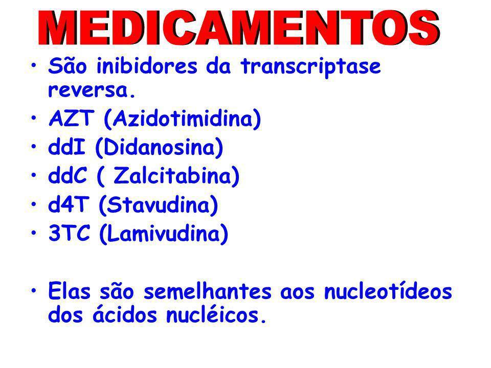MEDICAMENTOS São inibidores da transcriptase reversa.