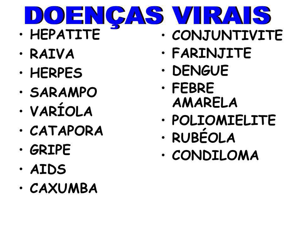 DOENÇAS VIRAIS HEPATITE CONJUNTIVITE RAIVA FARINJITE HERPES DENGUE