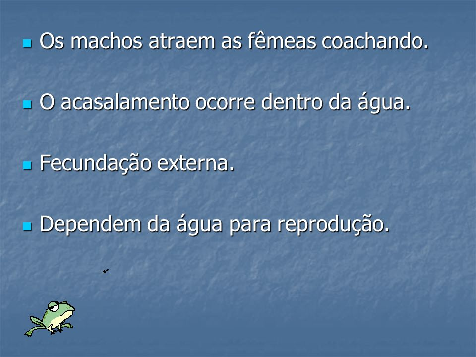 Os machos atraem as fêmeas coachando.