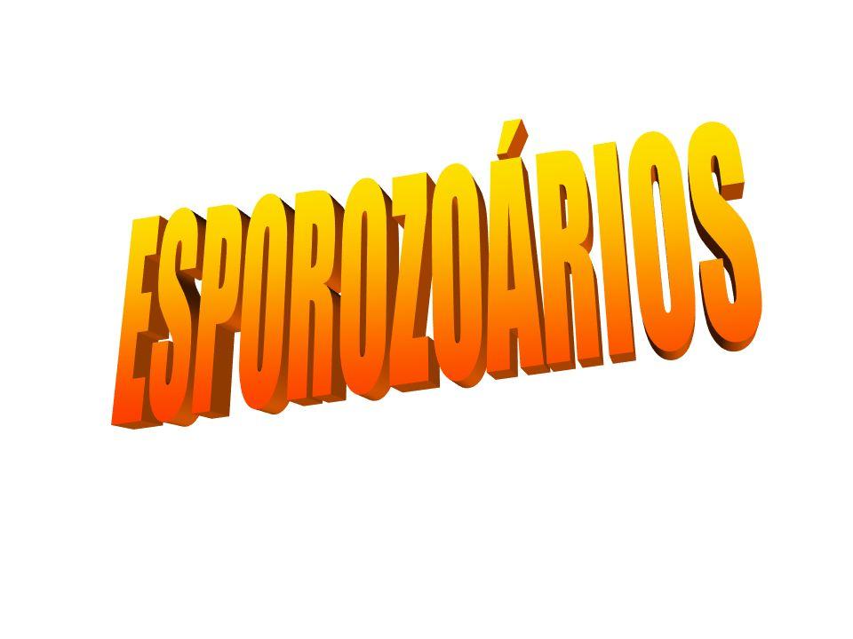 ESPOROZOÁRIOS