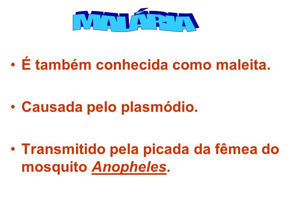 MALÁRIA É também conhecida como maleita. Causada pelo plasmódio.
