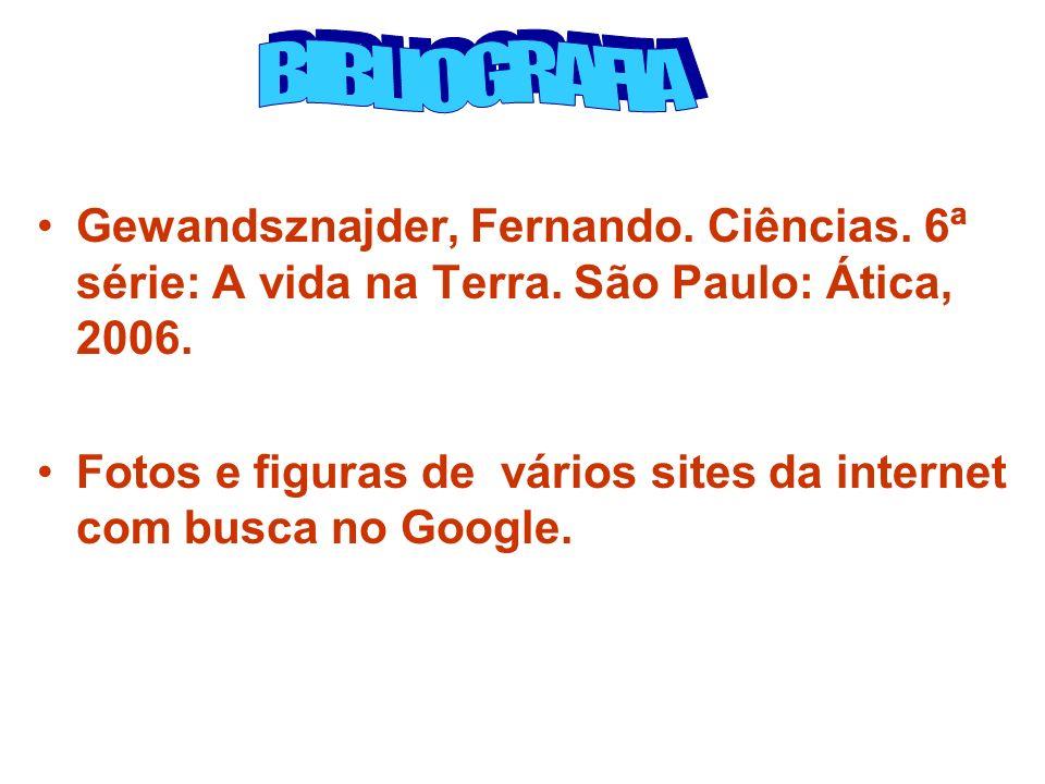 BIBLIOGRAFIA Gewandsznajder, Fernando. Ciências. 6ª série: A vida na Terra. São Paulo: Ática, 2006.