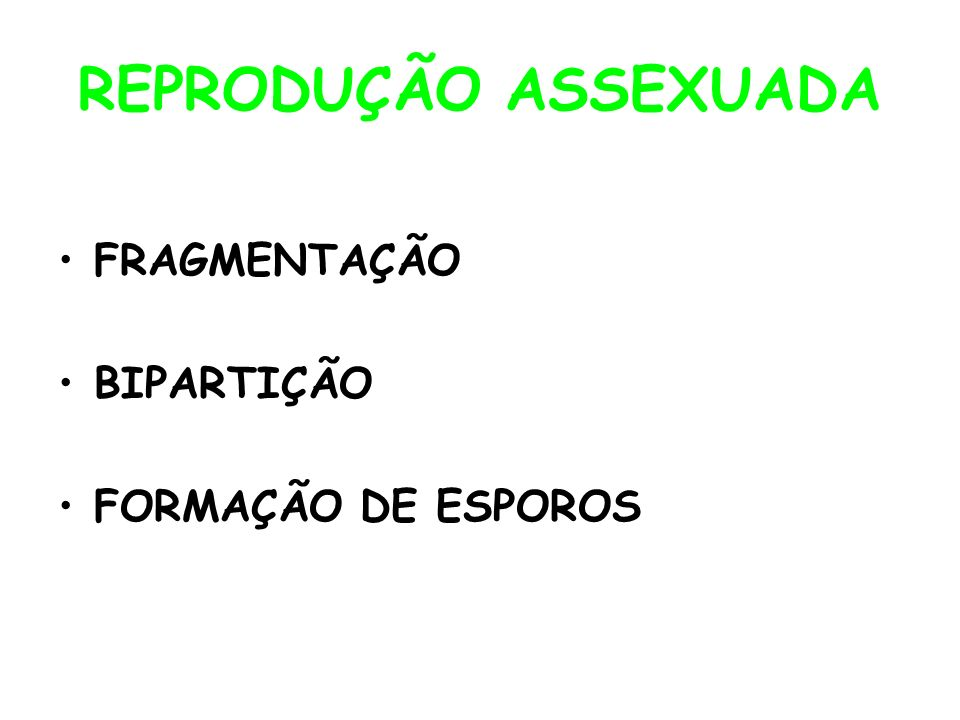 REPRODUÇÃO ASSEXUADA FRAGMENTAÇÃO BIPARTIÇÃO FORMAÇÃO DE ESPOROS
