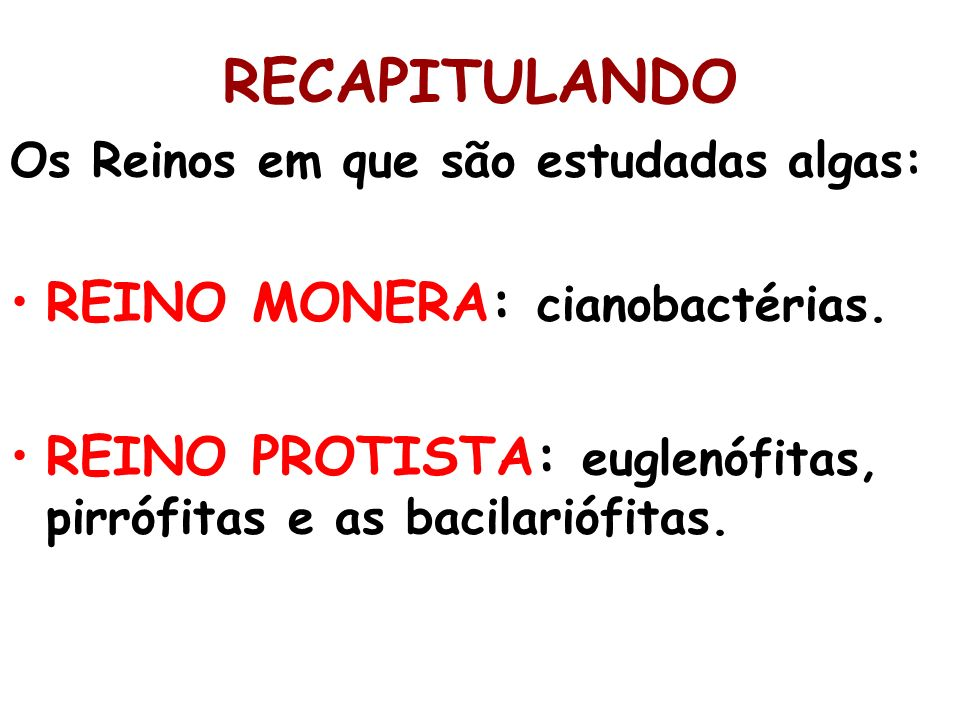 RECAPITULANDO REINO MONERA: cianobactérias.