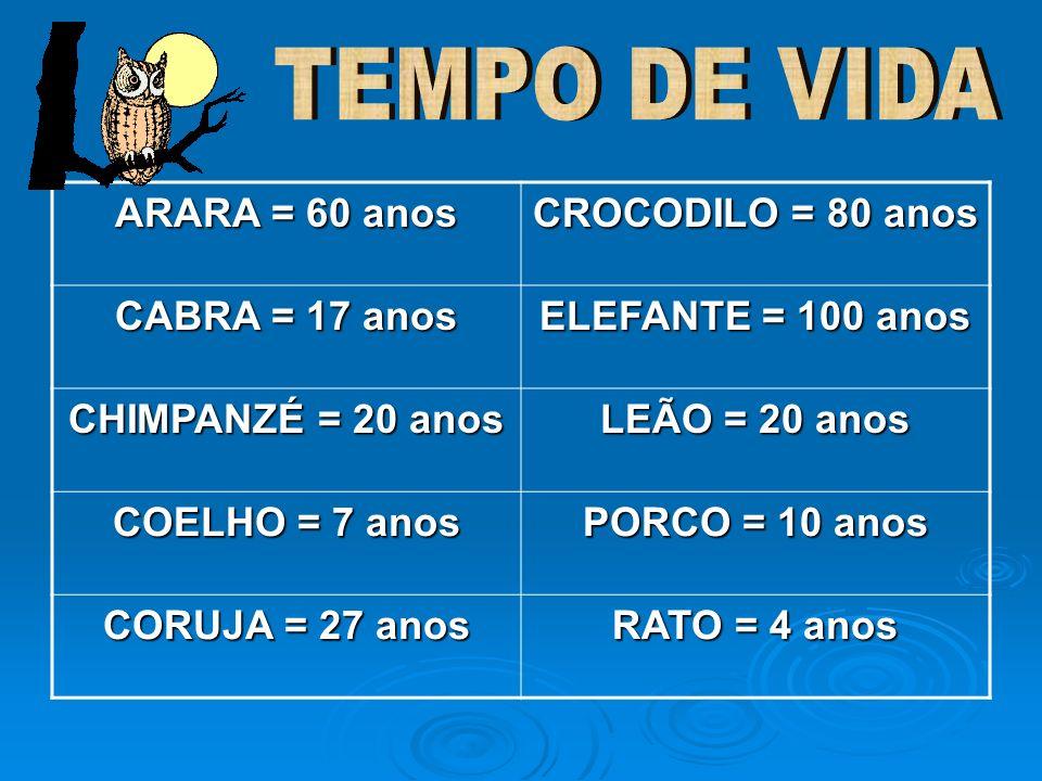 TEMPO DE VIDA ARARA = 60 anos CROCODILO = 80 anos CABRA = 17 anos