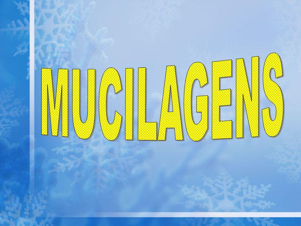 MUCILAGENS