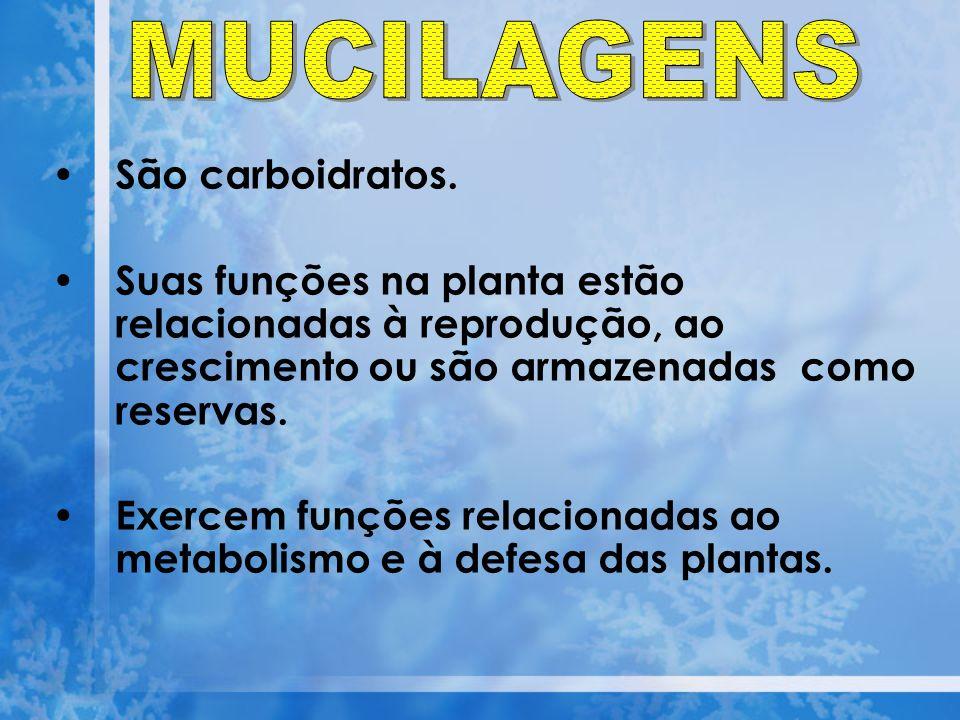 MUCILAGENS São carboidratos.