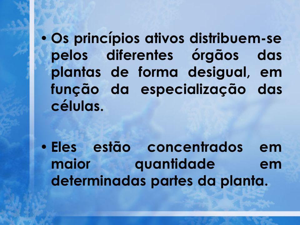 Os princípios ativos distribuem-se pelos diferentes órgãos das plantas de forma desigual, em função da especialização das células.