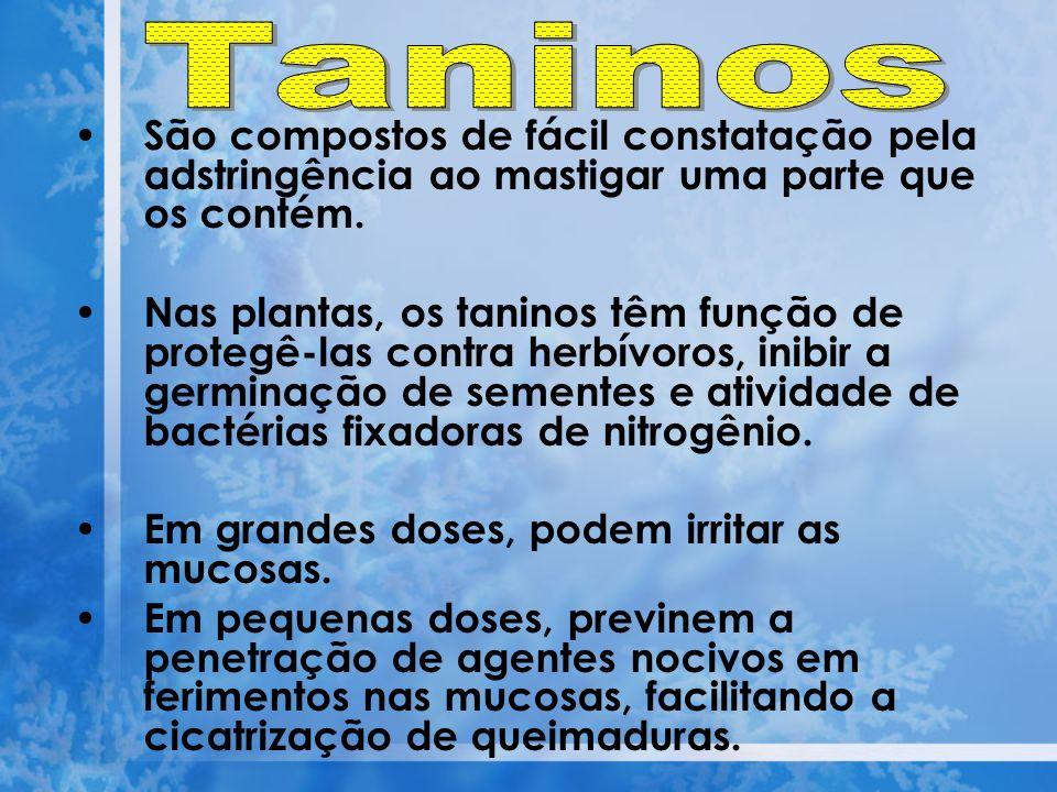 Taninos São compostos de fácil constatação pela adstringência ao mastigar uma parte que os contém.